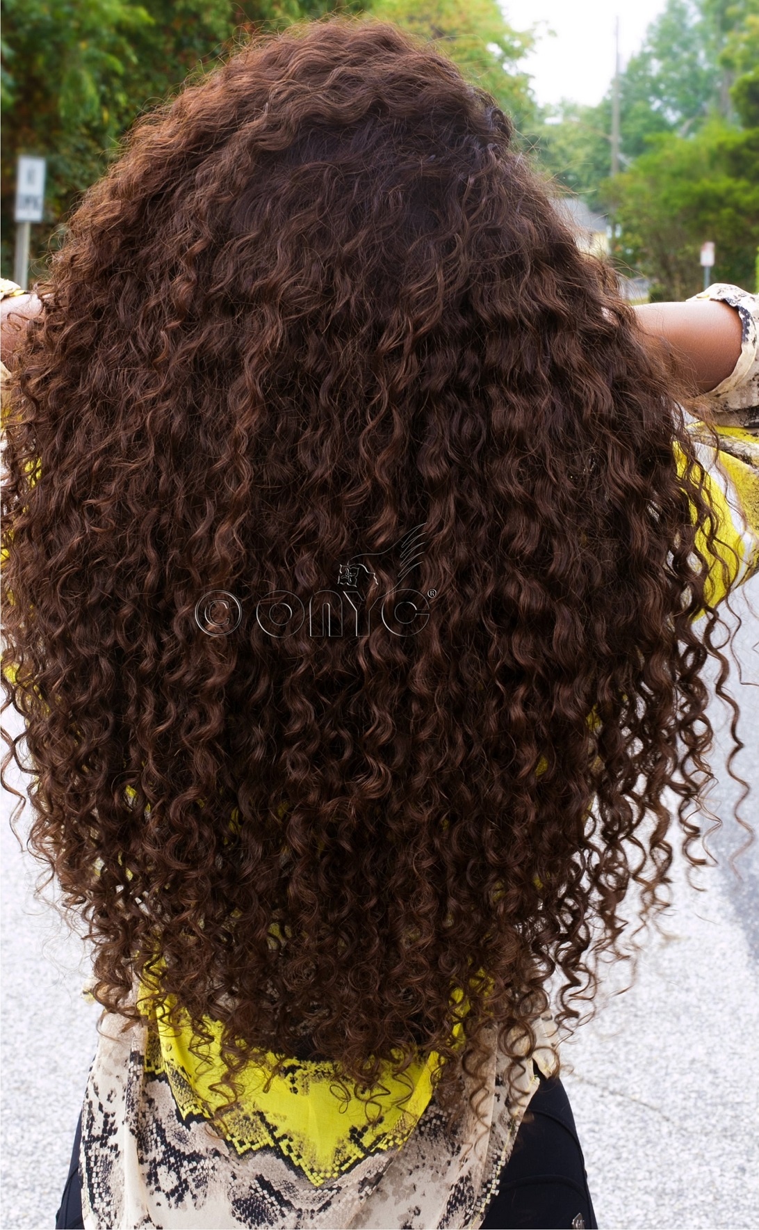 Thelma Okoro in Curly Addiction Color 4 and color 2 back